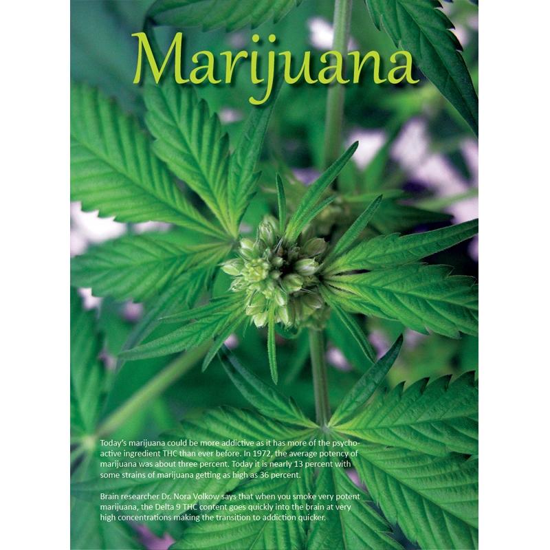 Marijuana Booklet