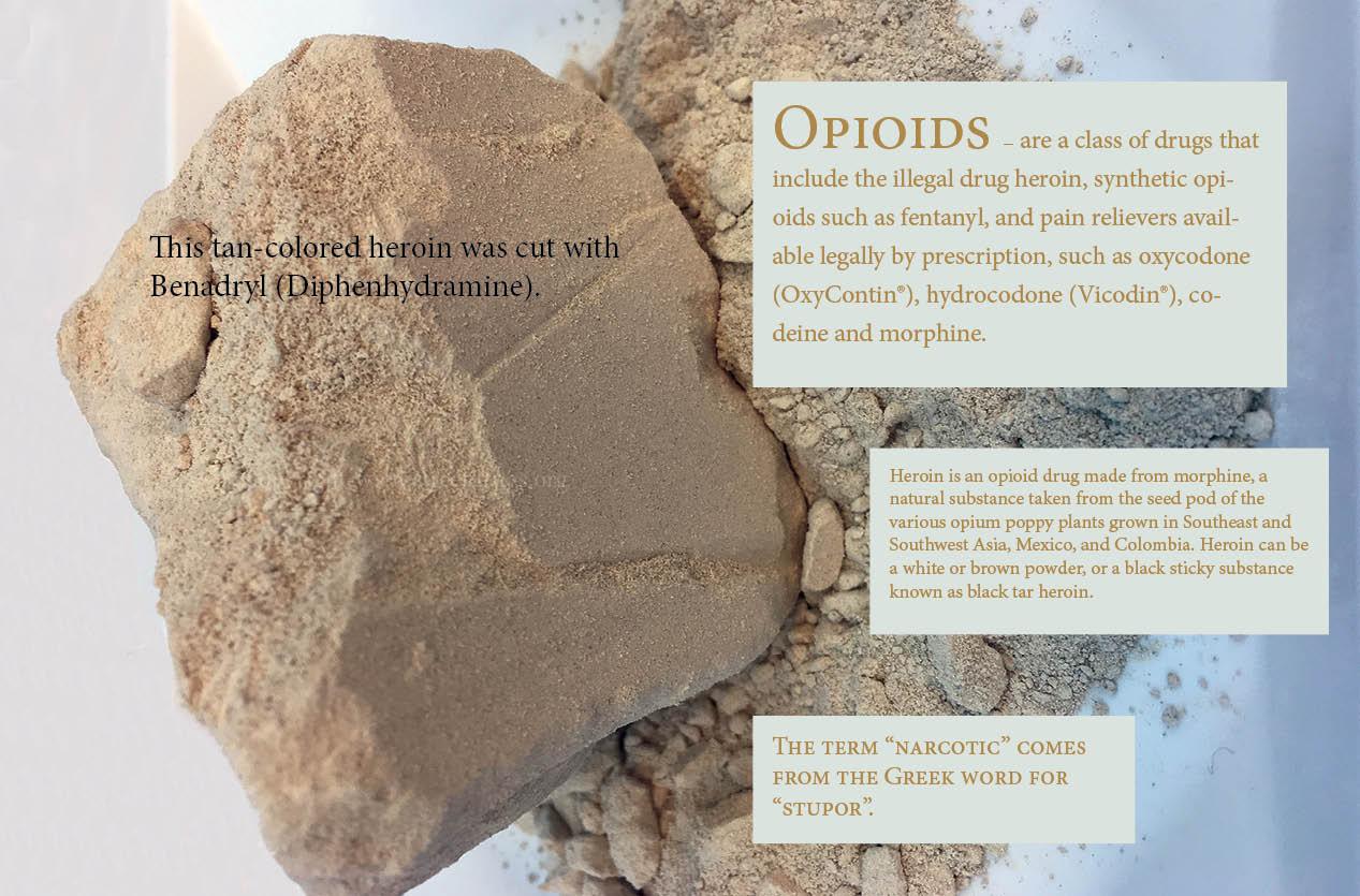 2020 Drug ID Guide (Online)